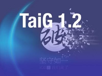 TaiG 12