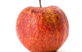 aging-apple