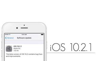 iOS 1021